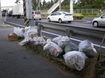沖縄県レンタカー協会国道331号清掃
